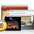 Business - Website Design